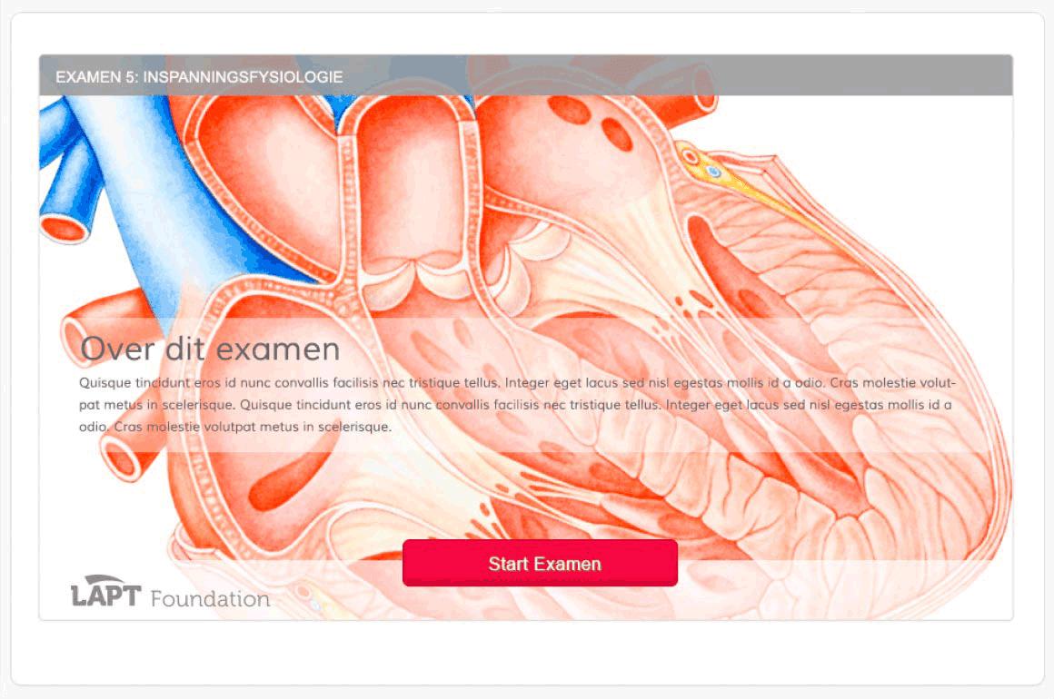 webdesign module online leeromgeving
